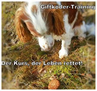 Anti-Giftköder-Training, Giftköder, Rems-Murr-Kreis