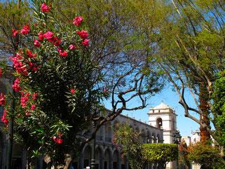 Park an der Plaza de Armas