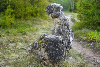 parc-naturel-regional-des-grands-causses-chemin-de-randonnée-corniches-du-Rajol-Causse-Noir-vautour-fauve-gîte-de-charme-le-colombier-saint-véran-la-roque-sainte-marguerite-aveyron-region-occtanie