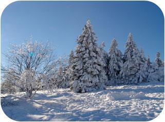 Winterlandschaft Braunlage