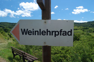 Schild Weinlehrpfad