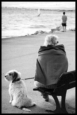 © Une fin d'après-midi de Marie-Fa Lazzari