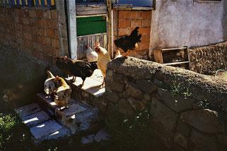 noch einmal fuhren wir durch ein anatolisches Dorf