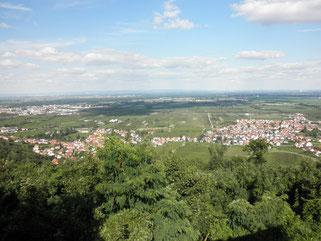 Blick vom Hambacher Schloss