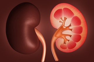 insuficiencia renal, falla renal, lesion renal aguda