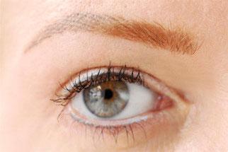 Permanent Make-Up Detail Augenbraue Häarchenzeichnung