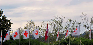 13. Mai 2014 - Einmal Kreuz weiss, neun Mal Kreuz rot