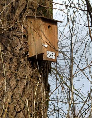 31. Januar 2014 - Possemgrabemweg 142 - im Augenblick unbewohnt. Ob  Vögel die Hausnummer auch lesen können ?