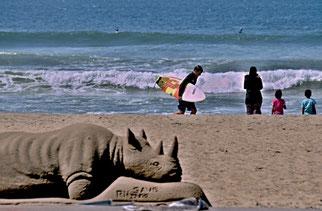 29. März 2014 - Am Indischen Ozean