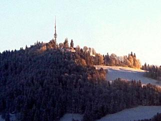 01. Februar 2014 - Unser Hausberg. In der Morgensonne schmilzt der Schnee