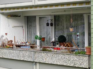 03. Februar 2014 - Biotop eines Balkons