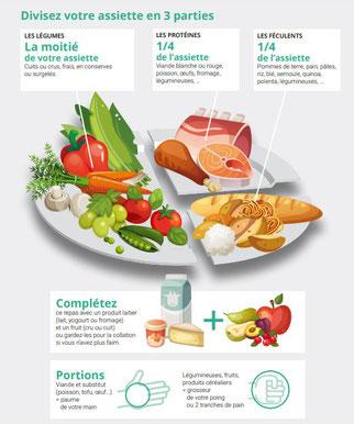 alimentation-équilibré-repas-complet-nutrition-calorie-protéine-glucide-lipide-vitamine-fibre-minéraux