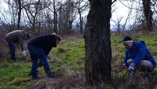 NABU KG Wolfenbüttel bei der Biotoppflege auf dem Kirschenberg