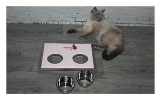 Katzen Futterbar Edelstahlnäpfe