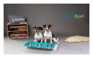 Futternapf Hund Acrylglas