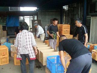 毎週木曜日の朝、野菜を持ち寄った農場メンバーみんなで1つ1つ箱に入れています。