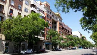 Calle Santa Engracia. Madrid