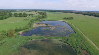 Naturschutzprojekt Saalbachniederung