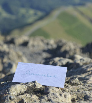 honourebel base contact business card on green hill