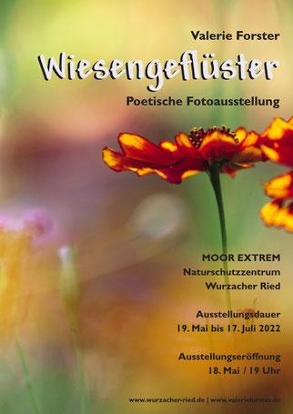 Valerie Forster, Lesung, Pfeifengras und Poesie