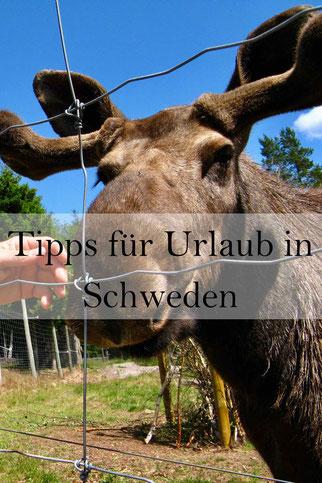 Schweden Urlaub: Tipps für eine Reise mit dem Wohnmobil. Camping, Anreise, Währung, Sprache, Wetter