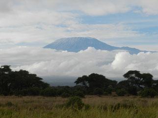 Fotosafari Kenia