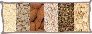 Nüsse und Samen sowie Getreideflocken als natürliche pflanzliche Eiweißquelle