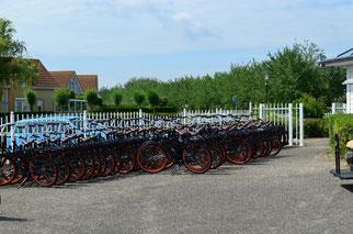 Fahrradverleih im Ferienpark Noordzee Résidence De Banjaard