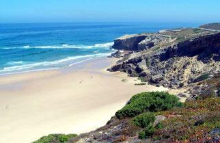Organic food in Portugal
