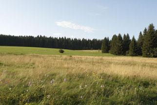 Foto: Westerwald Touristik-Service
