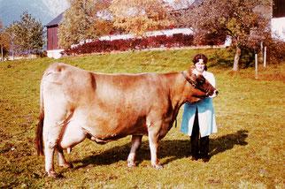 Auf diesem Bild sieht man Martins Mutter mit einer Kuh aus der Braunviehzucht.