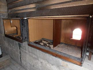 Schleiereulenkästen von innen im Kirchturm Mittelhausen
