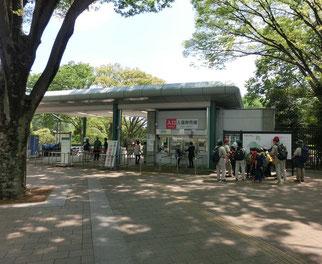 植物公園の正門です。ここから武蔵境通り、東八通り、吉祥寺通りで山本有三記念館と井の頭公園に向かいます