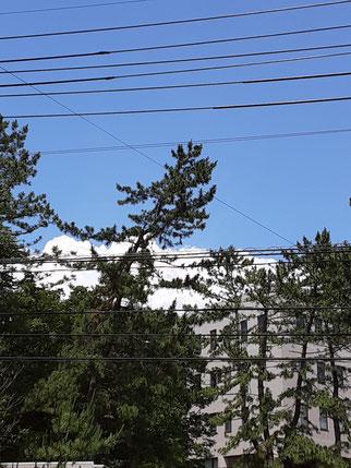 千葉大学南門近くの空