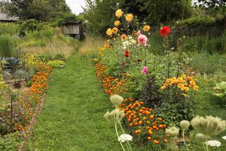 NABUnter Garten