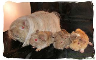Éowyn mit ihren 3 Jungen King Lui, Kaitlyn und Kimmi