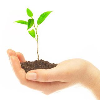 wachsen, sich weiterentwickeln, sich selbst verändern