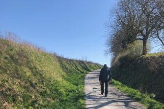 Rundgang im Scherbachtal, Foto: Chr. Aly