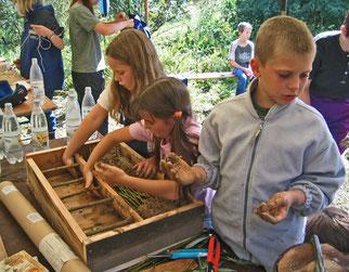 Forschungswerkstatt Wildbienen, Foto: NABU Wiesloch