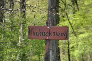 Dämmelwald, Kuckucksweg, Foto: Elke Reiser