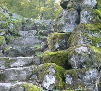 vermooste Steintreppe, Weg, Natur erfahren