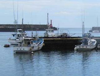 神奈川県・真鶴港の魚市場周辺の岸壁と船