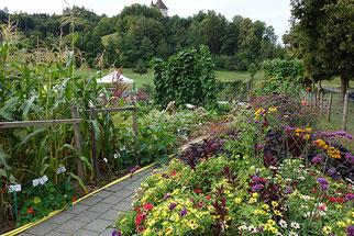 Gartenkurs mit Regine Kern auf der Liebegg