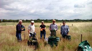 NABU-Gruppe bei der Biotoppflege