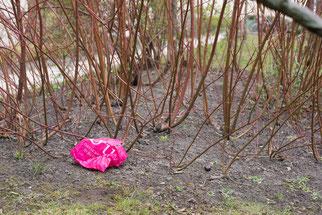 Müll in Hülle und Fülle Müllproblem Natur NABU Düren