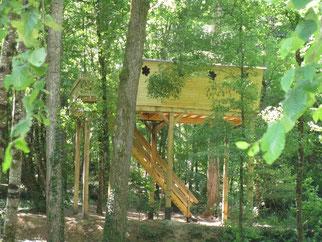nuit insolite cabane arbre