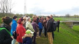 Rolf Engelmann (Universität Leipzig) und Mathias Scholz (UFZ) führten eine kleine Exkursion zu einem Standort der Pflanze am Deich der Neuen Luppe.