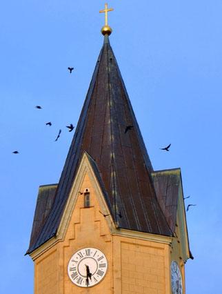 An der Kirche Leipzig-Sommerfeld gibt es an allen vier Seiten über der Turmuhr Einfluglöcher, die von den hier brütenden Dohlen genutzt werden. Foto: Susanne Ulbrich