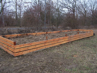 Auf dem Komposthaufen werden Futterpflanzen für Schmetterlingsraupen gepflanzt. Fotos: Steffen Wagner