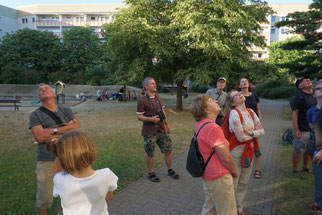 Bei der Mauerseglerexkursion konnten die Teilnehmer mehr als 150 Mauersegler am Himmel zählen.  Fotos: Marina Ide